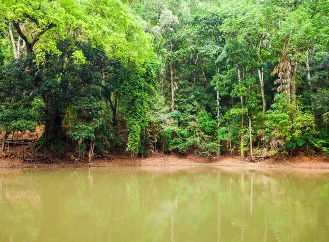 Day 6 -  Visit Udawatta Kele Forest Reserve