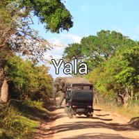 Yala - VISIT 2 SRI LANKA